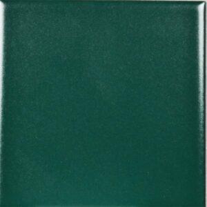 1300021-9,8x9,8-IN-Menta-Groen